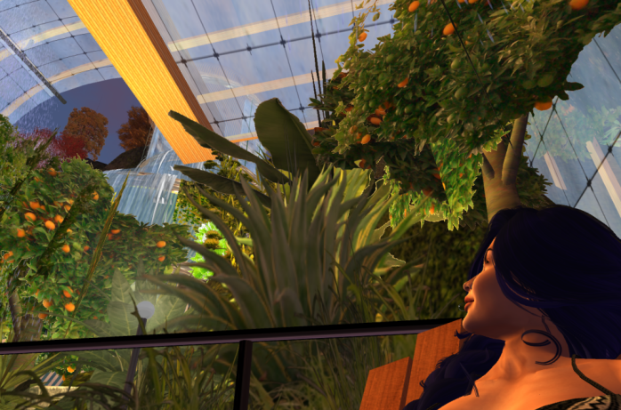 botanic-gardens_001