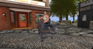 Shopping trolley_001